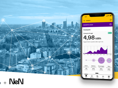 NeN Energia partners up with NET2GRID to empower Italian consumers through energy insights