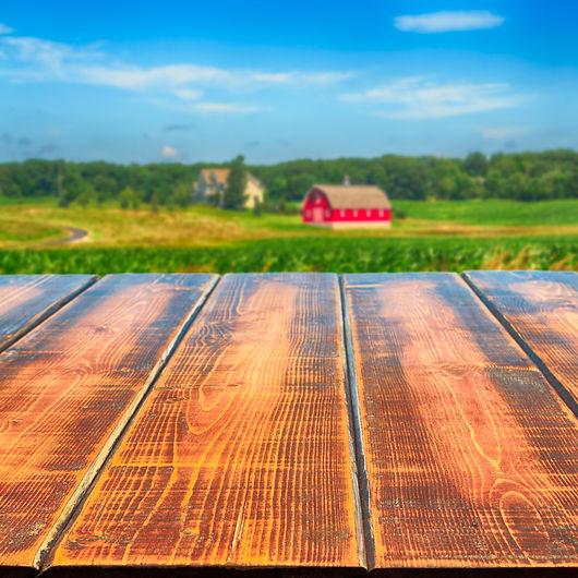 Farm Scene Board.jpg