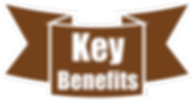Key-benefits2.png