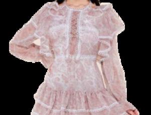 Long sleeve paisley dress