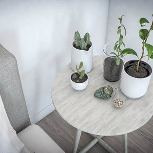 Minimal Ambient Plant