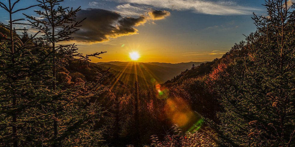 SOLD OUT!  FALL COLORS IN THE GREAT SMOKY MOUNTAINS!  PHOTO TRIP