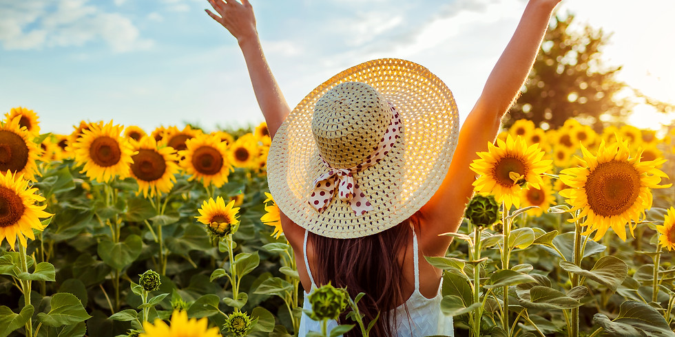 SUNFLOWERS & SUNSETS - HANDS ON SHOOTING!!!!