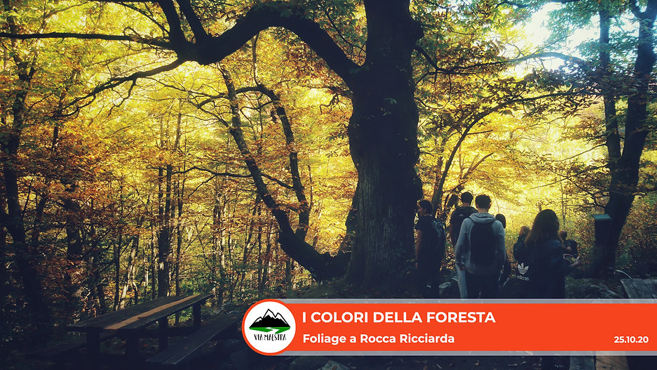 rocca_fol.jpg