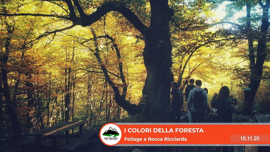 rocca_fol_edited.jpg