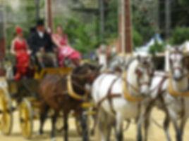 Feria de Jerez 018.JPG
