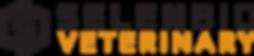 Logo - SBV Color sm.png