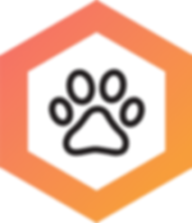 GingiShield_Paw_Icon_Option_V2_310x.png