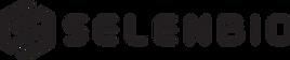 Logo - SB.png