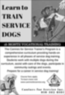 CFS Trainers Program.jpg