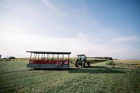 Steele Farms 2020-9504.jpg