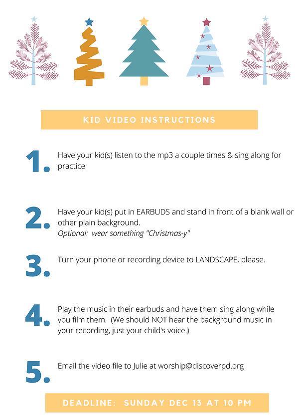 video instrucctions.png
