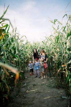 Steele Farms 2020-9551