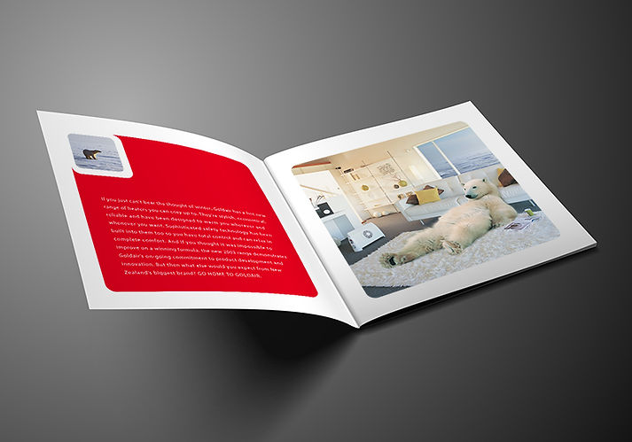 GOLDAIR Brochure Design