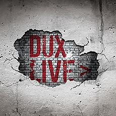 DUX Brand Design