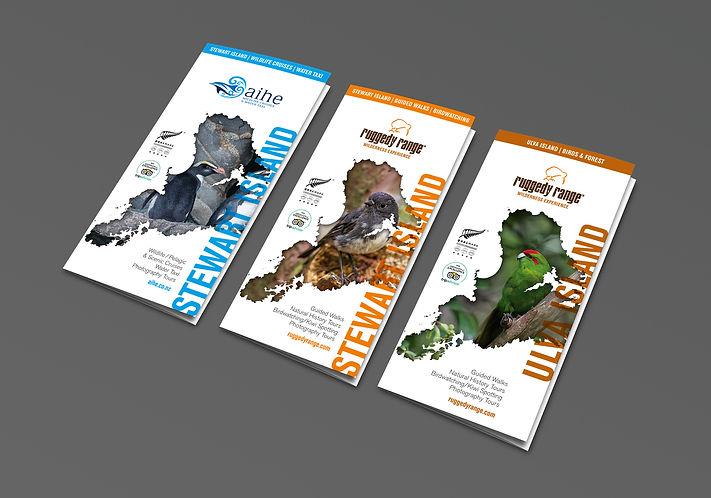 AIHE Brochure Design