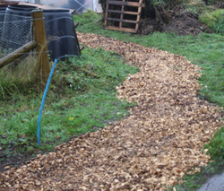 New path to polytunnel