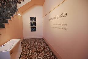 Exposição curadoria Ana Albani de Carvalho