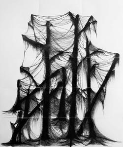 Algas filamentosas sobre restinga.