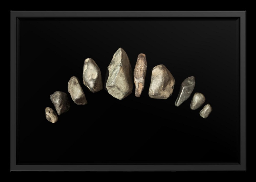 Terceira Dentição
