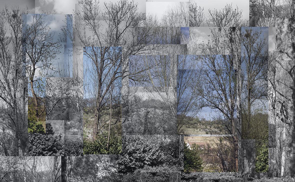 Jardim de Monet I