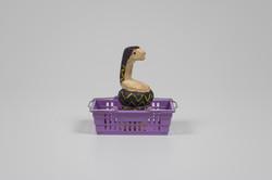 Market Cobra