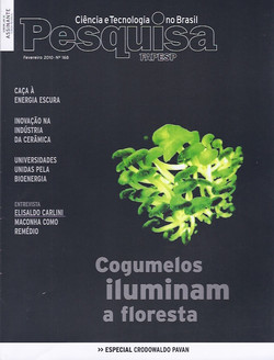 FP cover 2010