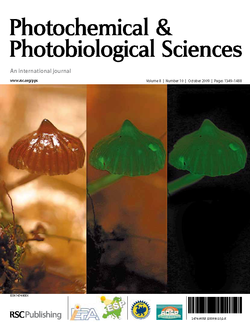 PPS cover 2009