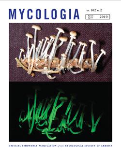 Mycologia cover 2010