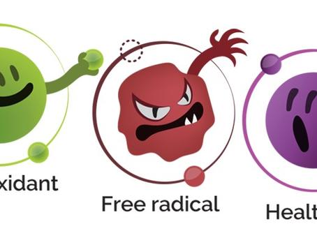 Understanding Free Radicals and Antioxidants