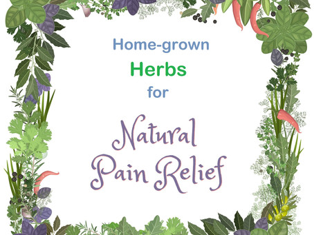 Herbs That Relieve Aches And Pains