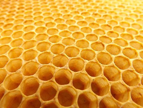 honeycomb-530987_1920.jpg