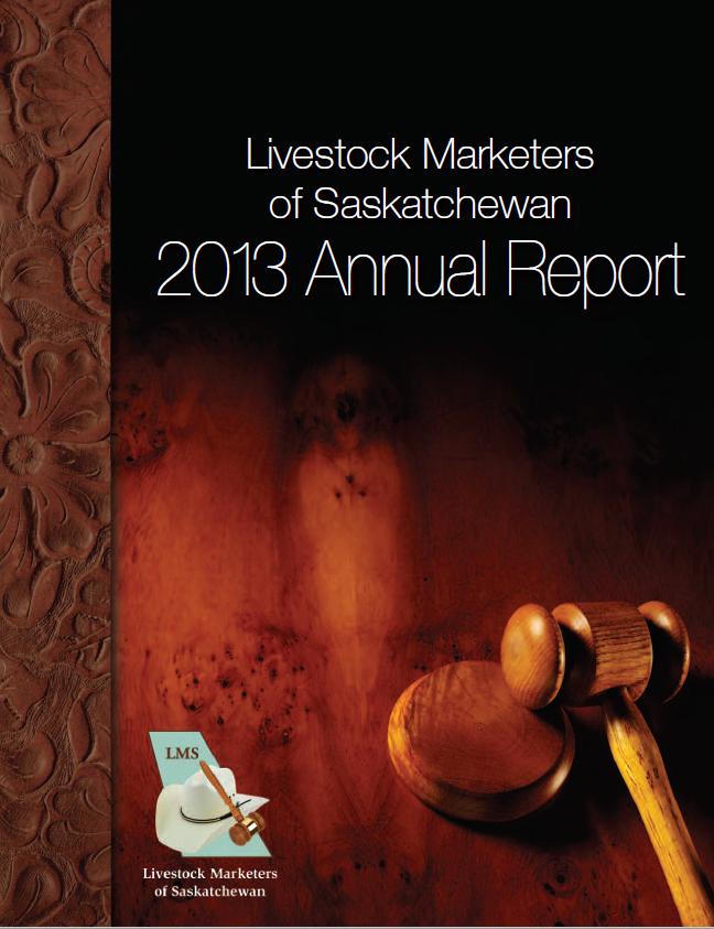2013 LMS AR Cover