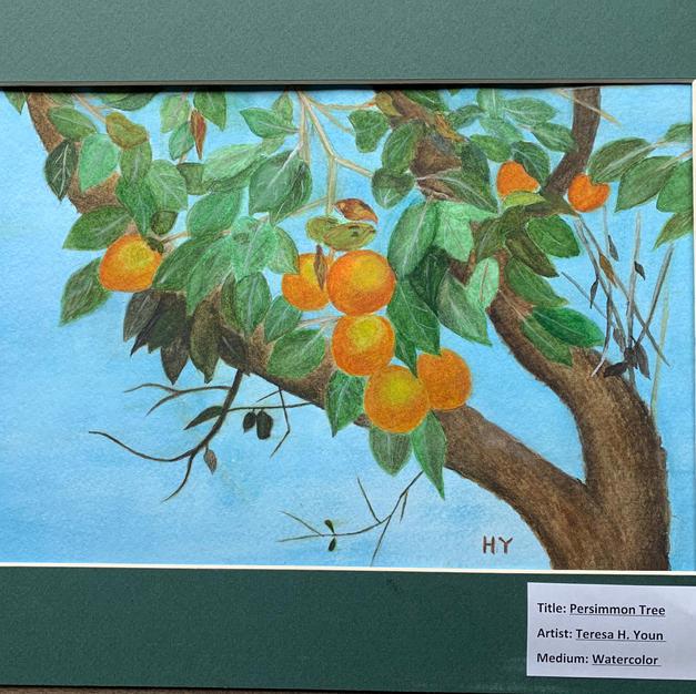 #2 Persimmon Tree