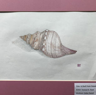#1 A Shell from Hawaii