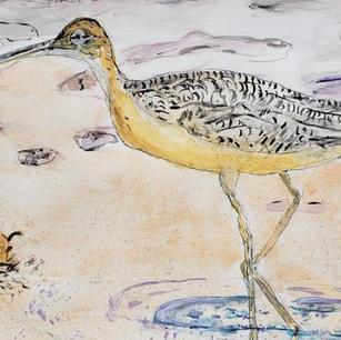 #2 The Crane