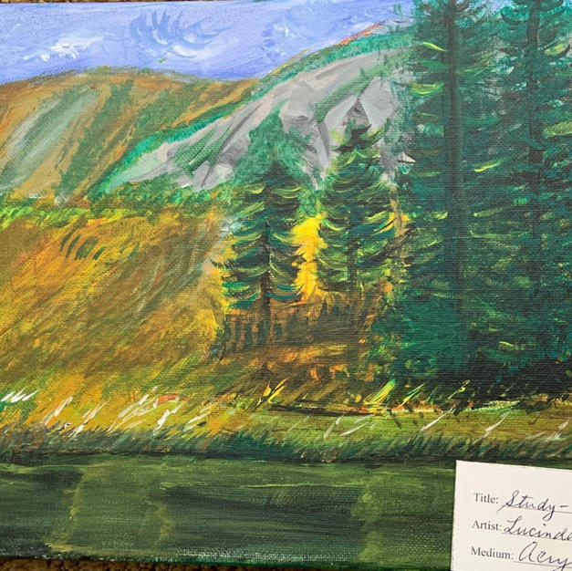 #4 Study Landscape