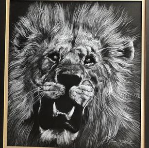 #5 Roaring Lion