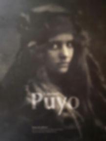 page de couverture livre sur Constant Pu