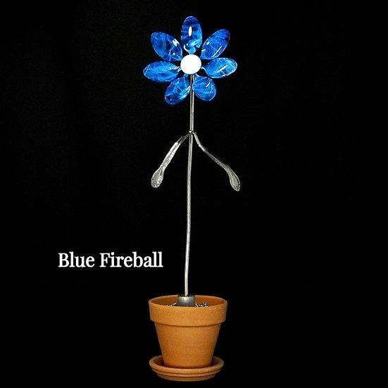 Blue Fireball Med Flower (Stake Only)