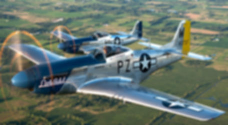 Warbirds - Fighters For Sale