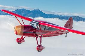 Fairchild 24