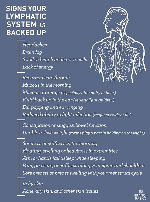 Signs-Your-Lymphatic-System-is-Backed-Up