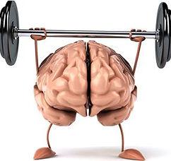cervello peso.JPG
