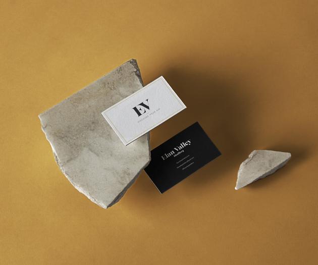 Business-Card-Presentation-Mockup.JPG