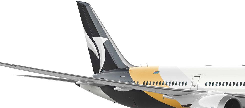 Boeing%20787_edited.jpg