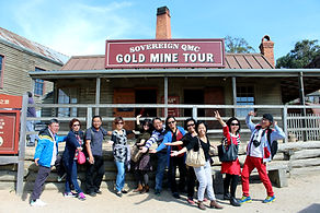 墨爾本, 墨爾本一日遊, 墨尔本一日游, Melbourne Chinese Day Tour, Melbourne Day Tours, Melbourne Local Tour, Melbourne Cantonese Tour,