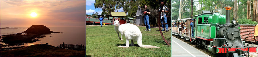 看看墨爾本旅遊團, 墨爾本一日遊, 大洋路一日游, 墨爾本旅遊, Melbourne Local Tour,