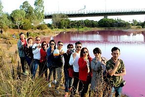 Melbourne Chinese Local Tour, 墨爾本粉紅湖, Melbourne Chinese Tour, Melbourne Pink Lake, Melbourne Cantonese Day Tour, 墨爾本 Local Tour, , Melbourne day tours, Melbourne Local Tour, Melbourne Chinese Tour, Melbourne Chinese Day Tour,