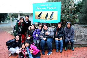 墨爾本, 墨爾本一日遊, 墨尔本一日游, Melbourne Day Tour, Melbourne Day Tours, Melbourne Cantonese Tour, Melbourne Chinese Tour,